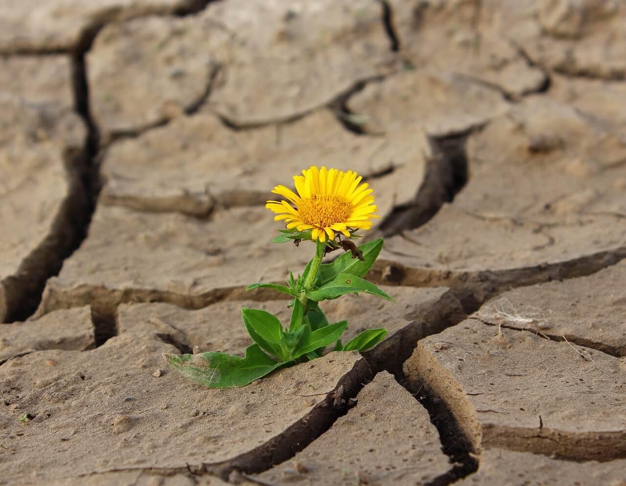 Miért nem működik mindig a pozitív gondolkodás?
