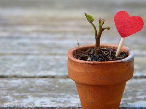 Önszeretet, self-love